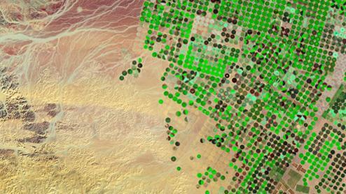 Satellitenbild getriebene Assistenzsysteme für die Österr. Agrarwirtschaft